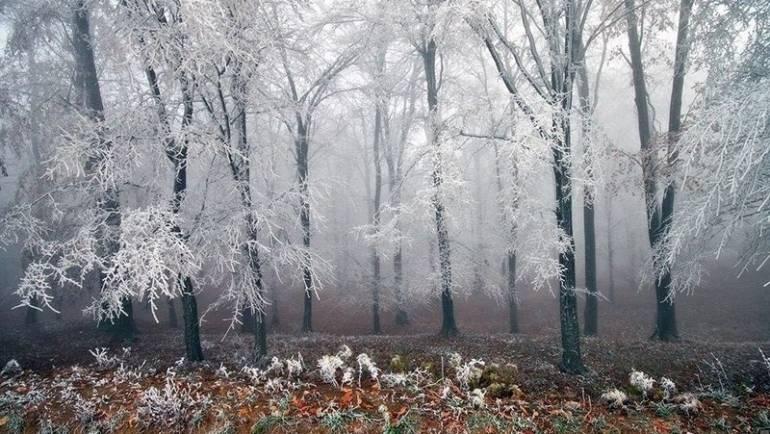 Nagoveštaj zime